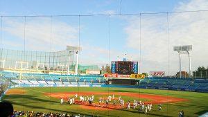 高校野球の明治神宮大会での静岡vs早実のナインたち